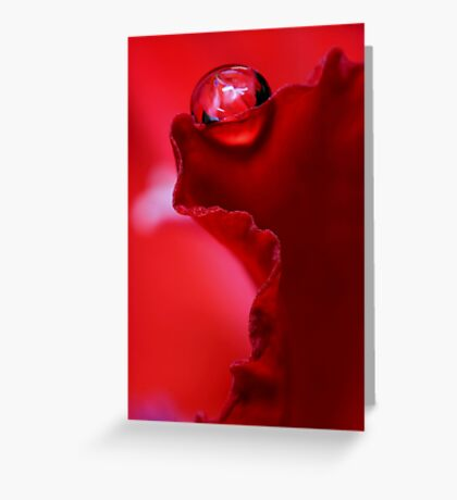 Ruffle Red Greeting Card