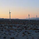 Tule Wind Farm, Ocotillo, California by Mike Kunes