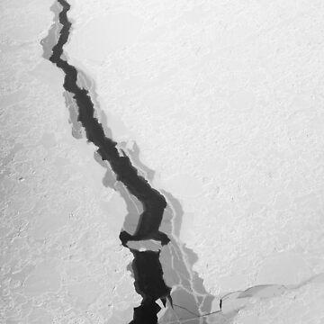 Antartica by silvtom