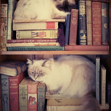 Library Cats by Artsez