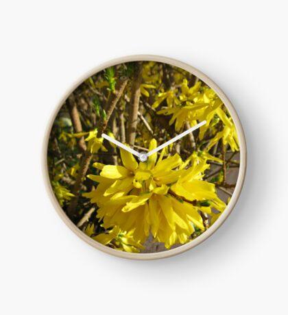 Goldene Forsythie-Blume Uhr