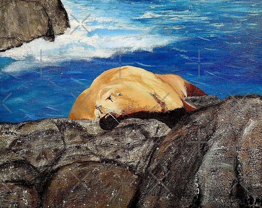 Seal by Kimberly Miller