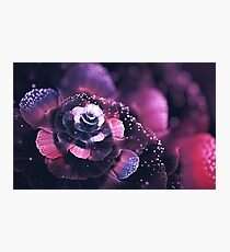 Dreamy smoothy Photographic Print