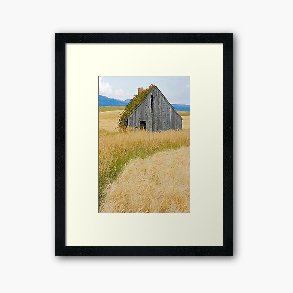 Broke Down Beauty, a.k.a. the Butt of the Barn Framed Art Print
