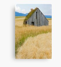 Broke Down Beauty, a.k.a. the Butt of the Barn Canvas Print