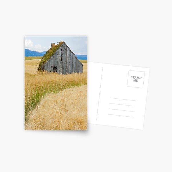 Broke Down Beauty, a.k.a. the Butt of the Barn Postcard