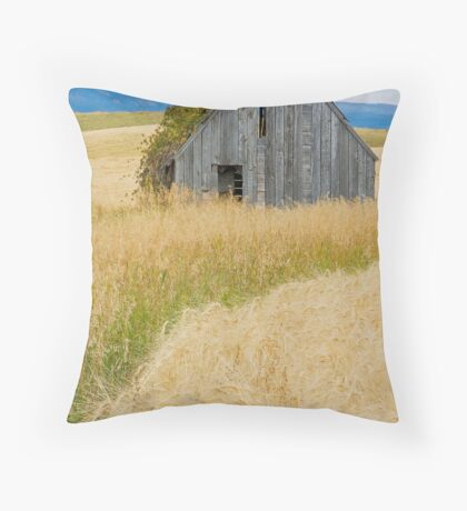 Broke Down Beauty, a.k.a. the Butt of the Barn Throw Pillow