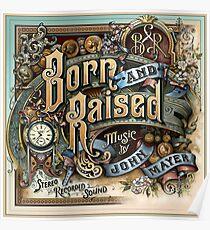 john mayer born raised tour 2018 doso Poster