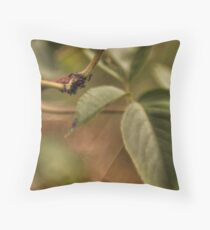 Cluster of Ants Throw Pillow