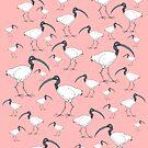 Ibis pattern (pink) by Matt Mawson