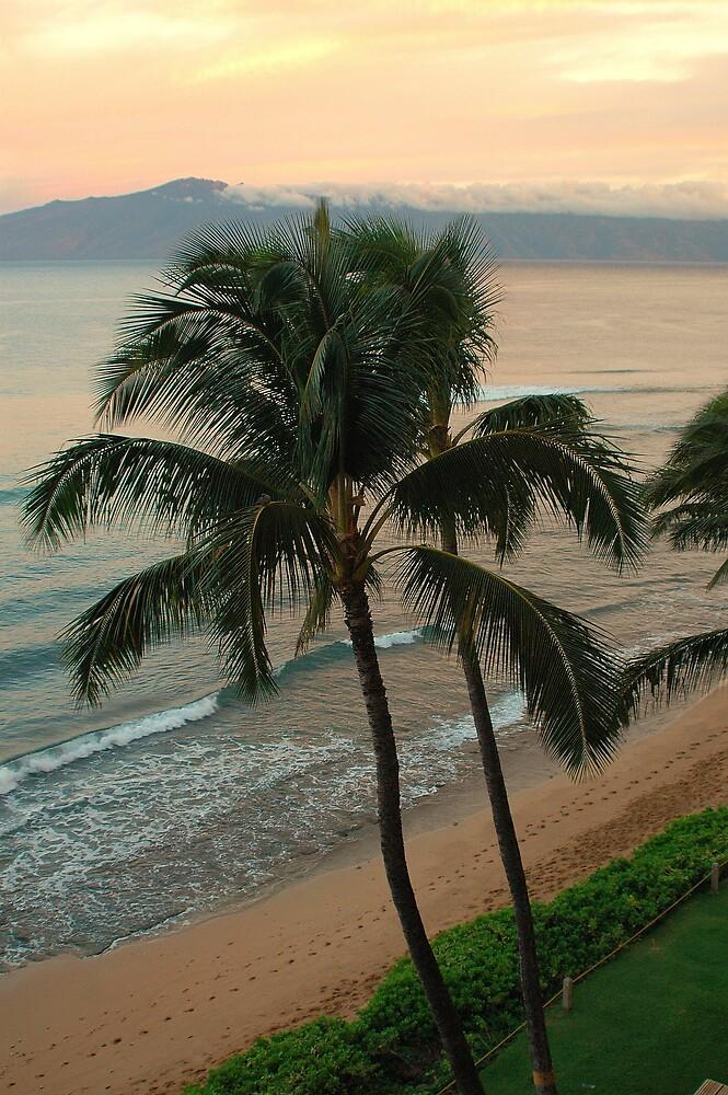 Sunrise, Lahaina, Maui, Hawaii by fauselr
