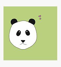 Pandalove in grün Fotodruck