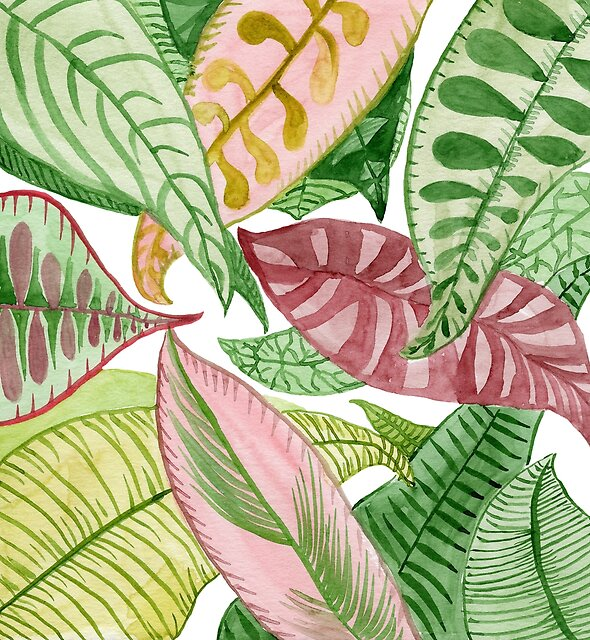 Watercolor Tropical Leaves by MarinaSotiriou