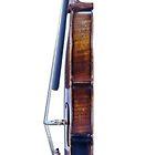 Violin Profile by Warren Paul Harris