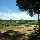 *Part of the Werribee Golf Course and Werribee River* by EdsMum