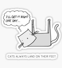 CATS ALWAYS LAND ON THEIR FEET Sticker