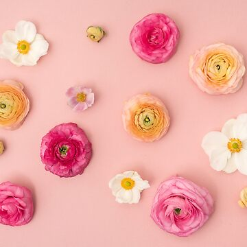Floral Flat Lay Background with Rununculus and Anemones by ilzesgimene
