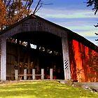 Neet Bridge ~ Rockville, Indiana ~ United States by Marie Sharp