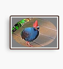 """ The Rouroul crested Partridge"" Canvas Print"