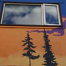Wanna Spruce Up Your House? Paint Pines On It by David McMahon