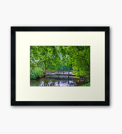 Latice Bridge Framed Print