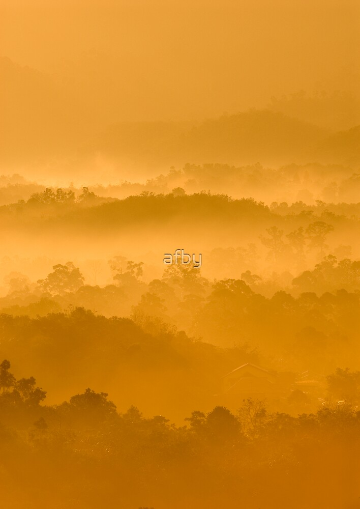 Misty morning by afby