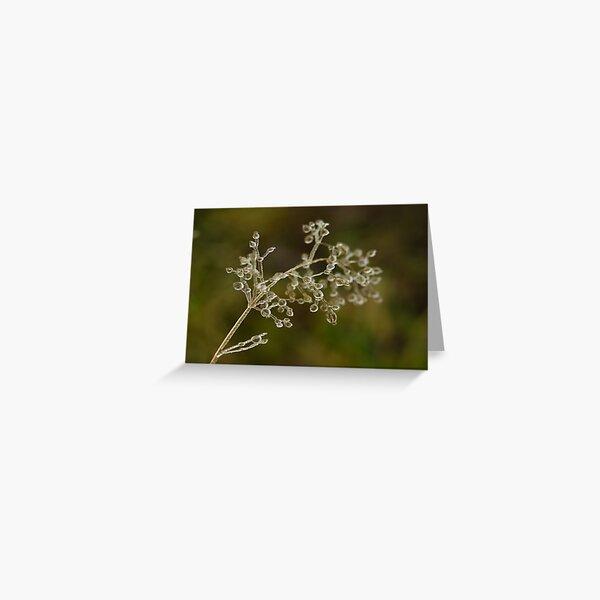 Crystal elegance  Greeting Card