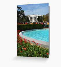 Springtime on the South Lawn Greeting Card