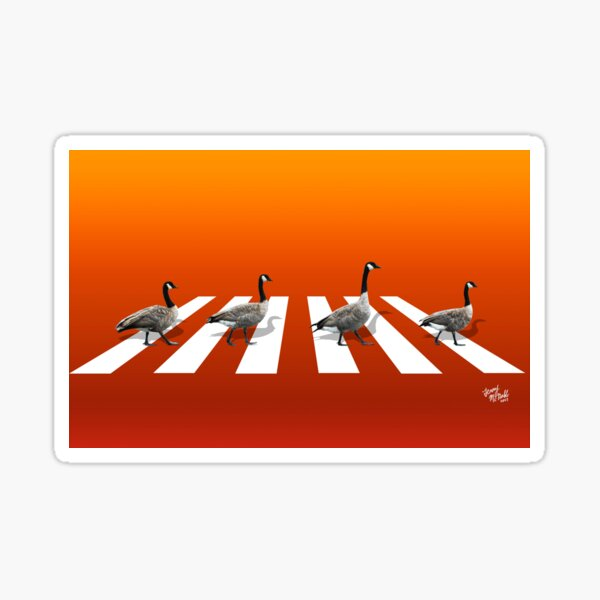 Geese Road Sticker