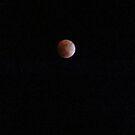 Eclipse by Carolyn Perrick