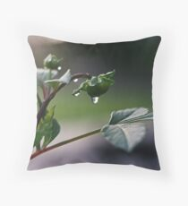Rain5 Throw Pillow
