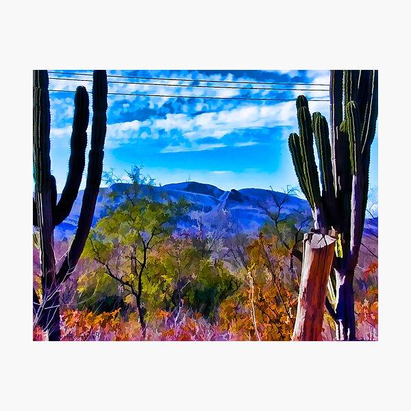 Desertscape #2 Photographic Print