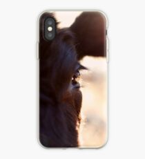 Cows have the most beautiful eyes iPhone Case