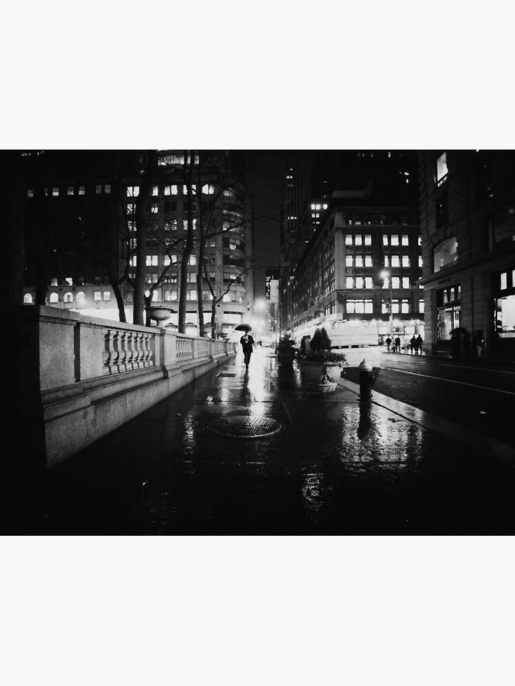 New York City Noir by vgucwaphoto
