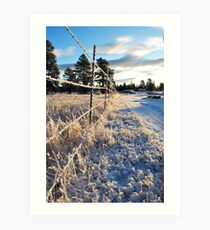 All Along the Barbedwire Art Print