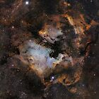 NGC 7000 20 Panel mosaic by Chuck Manges