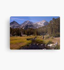 Little Lakes Valley Hiker, Sierras, CA Metal Print