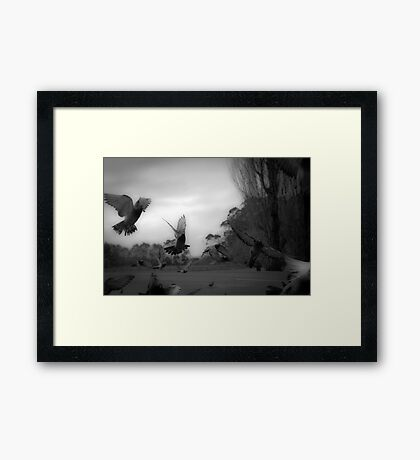 From The Hip Framed Print