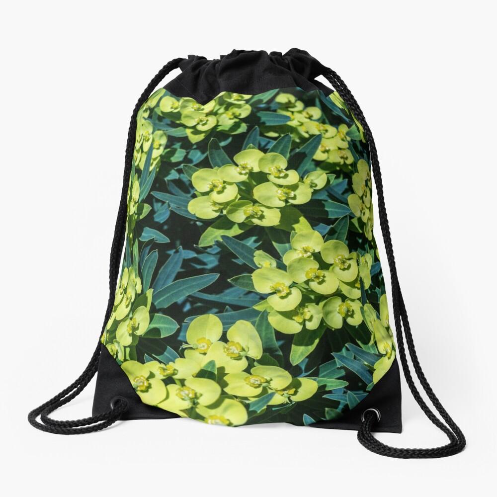 Euphorbia Turnbeutel