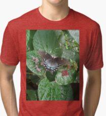 That September in the Rain Tri-blend T-Shirt