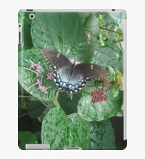 That September in the Rain iPad Case/Skin
