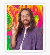 Leo, die 70er Show Sticker