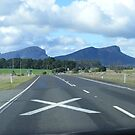 Rush hour in the Grampians. by David Smith
