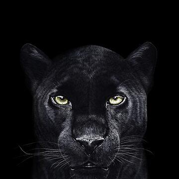 Panther on black by kodamorkovkart