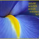 John 14:6 (words of Jesus) by picketty