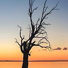 Sunset Lake  by Ray Warren