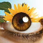 PolLENS by Monica Carvalho (mofart_photomontages)