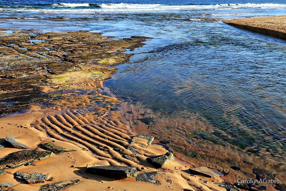 Narabeen Beach Rocks by CarolynAGates