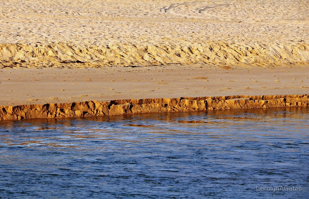 Narabeen Beach Lines by CarolynAGates
