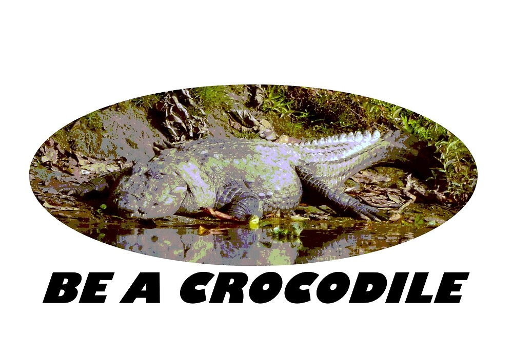 Be a Crocodile by McCandless92